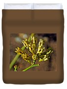 Mormon Tea On Tahquitz Canyon Way In Palm Springs-california Duvet Cover