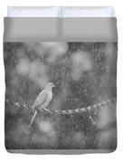 Morning Dove In The Rain Duvet Cover
