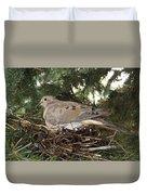 Morning Dove On Her Nest 2 Duvet Cover