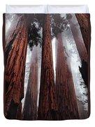 Morning Fog In Redwood Forest Duvet Cover