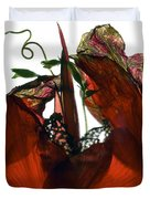 Morning Glory Canna Red Duvet Cover