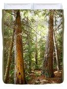 Morton Pines Duvet Cover