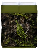 Moss Colony Duvet Cover