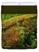 Moss Covered Log Duvet Cover