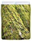 Moss On A Cedar Duvet Cover