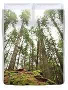 Moss Under The Cedars Duvet Cover