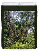 Mossy Old Tree Duvet Cover