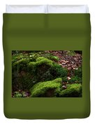 Mossy Rocks In Spring Woods Duvet Cover