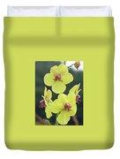 Moth Mullein Wildflowers - Verbascum Blattaria Duvet Cover