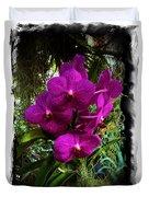 Moth Orchids  Duvet Cover