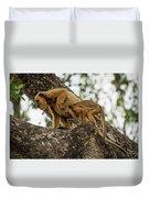 Mother And Baby Black Howler Monkeys Climbing Duvet Cover