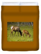 Mother Elk And Fawn Duvet Cover