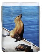 Mother And Baby Sea Lion At Oceanside  Duvet Cover