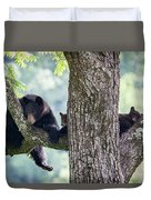 Mother Bear And Cubs Duvet Cover