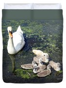 Mother Swan And Baby Cygnets Duvet Cover