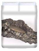 Mount Etna Souvenir Coin In Lava Duvet Cover