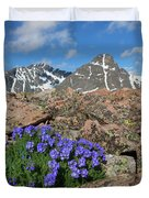 Mount Holy Cross With Wildflowers 2 Duvet Cover