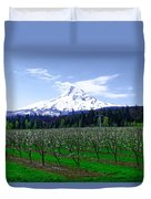 Mount Hood Behind Orchard Blossoms Duvet Cover