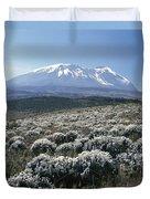 Mount Kilimanjaro, The Breach Wall Duvet Cover