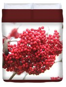 Mountain Ash Berries Duvet Cover