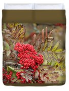 Mountain Ash With Berries Duvet Cover