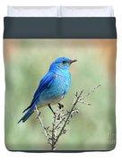 Mountain Bluebird Beauty Duvet Cover