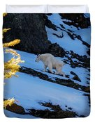 Mountain Goat And Larches Duvet Cover