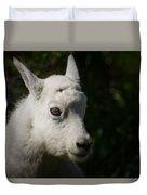 Mountain Goat Kid Portrait Duvet Cover