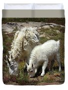 Mountain Goat Nanny And Kid Foraging At Columbine Lake - Weminuche Wilderness - Colorado Duvet Cover