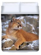 Mountain Lion On Snow-covered Rock Outcrop Duvet Cover