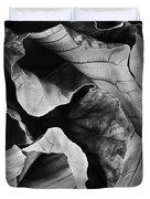 Mounts Botanical Garden 2363 Duvet Cover