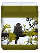 Mourning Dove 2 Duvet Cover