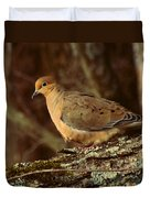 Mourning Dove At Dusk Duvet Cover