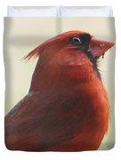 Mr Cardinal Duvet Cover