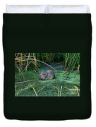 Mr. Muscrat Duvet Cover