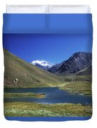 Mt Aconcagua And Laguna Horcones Duvet Cover