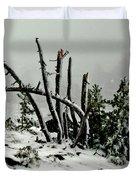 Mt Hood Snow Duvet Cover