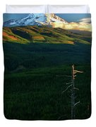 Mt Hood With Snag Duvet Cover