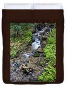 Mt. Spokane Creek 2 Duvet Cover