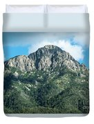 Mt. Wrightson Summit Duvet Cover