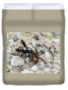 Mud Dauber Wasp And Prey Duvet Cover