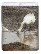 Muddy Tundra Swan Duvet Cover