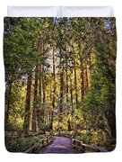 Muir Woods Duvet Cover