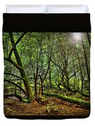 Muir Woods Rejuvenation Duvet Cover