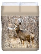 Mule Deer In Winter In The Pike National Forest Duvet Cover