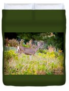 Mule Deer Duvet Cover
