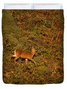 Mule Deer - Mattole Beach Duvet Cover