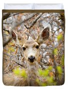 Mule Deer Portrait In The Pike National Forest Duvet Cover