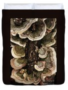 Mushroom Shells By The Lake Shore Duvet Cover