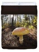 Mushroom Toadstool Duvet Cover